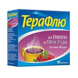 ТераФлю, порошок для приготовления раствора для приема внутрь, лесные ягоды, 11.5 г, 10 шт.