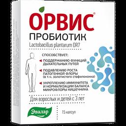 Орвис Пробиотик