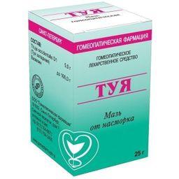 Туя, мазь для наружного применения гомеопатическая, 25 г, 1 шт.
