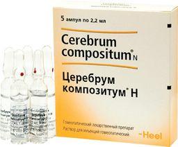 Церебрум композитум Н, раствор для инъекций гомеопатический, 2.2 мл, 5 шт.