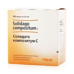 Солидаго композитум С, раствор для внутримышечного введения гомеопатический, 2.2 мл, 100 шт.