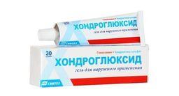 Хондроглюксид, 5%, гель для наружного применения, 30 г, 1шт.