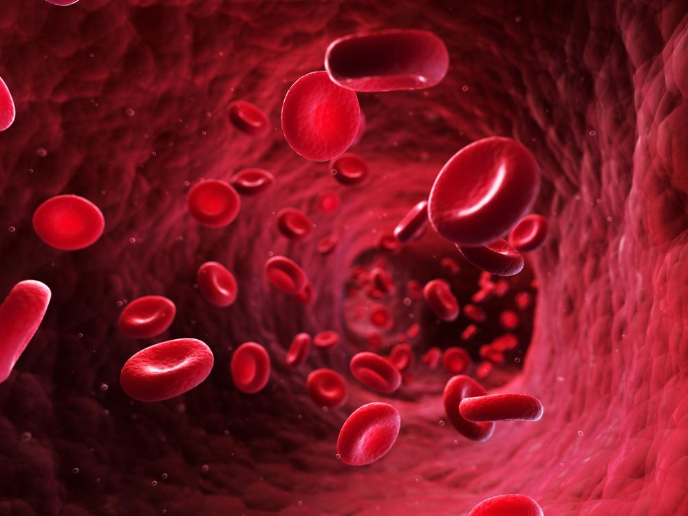 Как остановить венозное кровотечение?